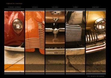 tomsky-vintage-1024×720-370×260